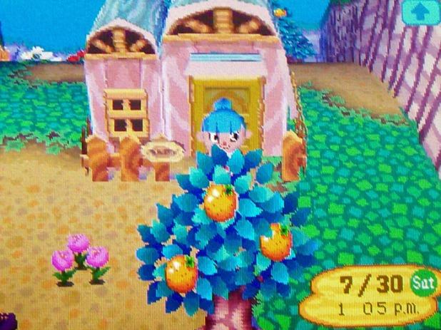 Roald's house