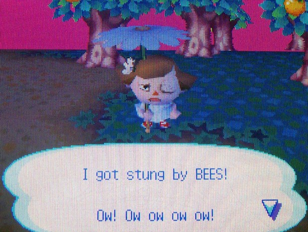 Stung by bees