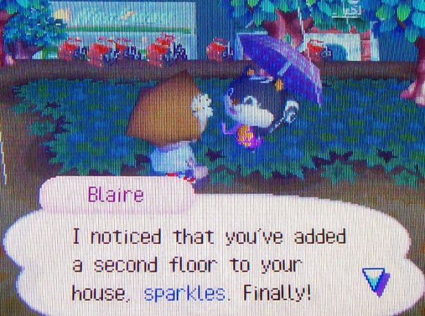 Blaire remarking that I've finally expanded my home