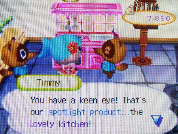 The spotlight item is a lovely kitchen