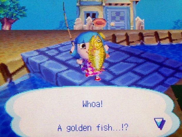 Catching a dorado
