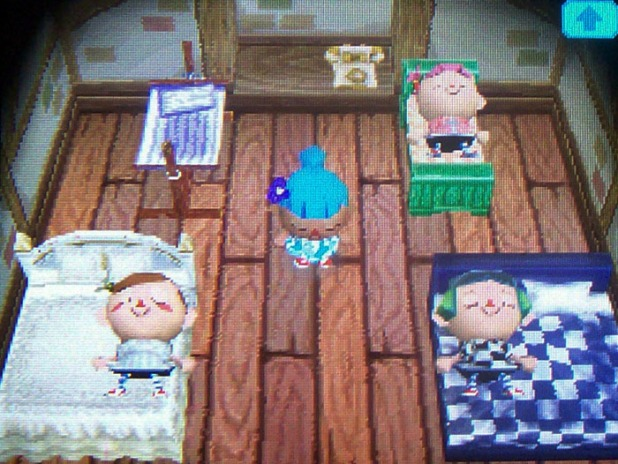 New beds for Twisk, Bell, Harmony, and Melody in the attic