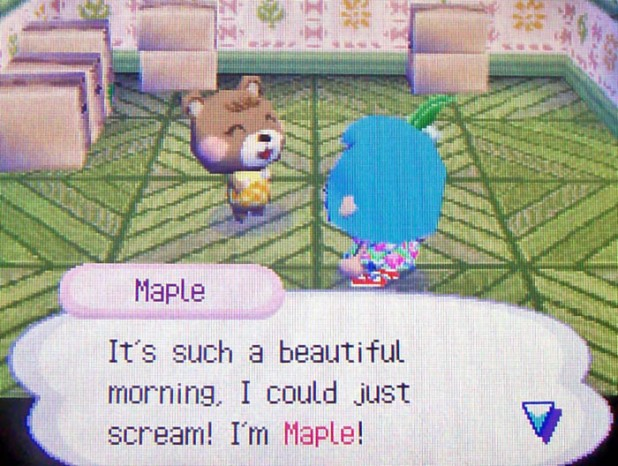 Maple: It's such a beautiful morning, I could just scream! I'm Maple!
