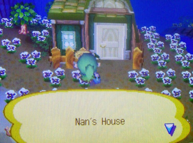 Finding Nan's house