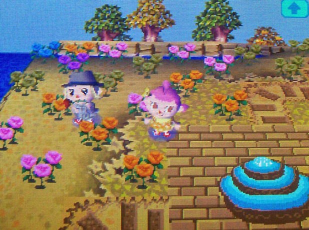 Rose garden on StarCity's island