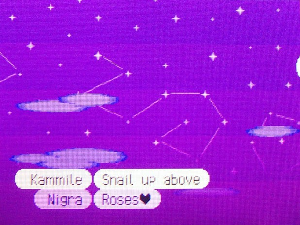 Snail constellation