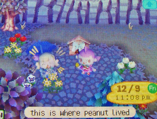 Visiting where Peanut used to live