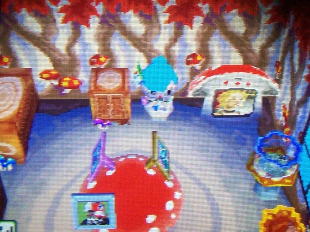 Mush room in Usagi's house