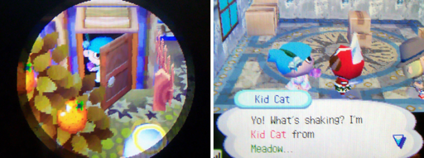Meeting Kid Cat