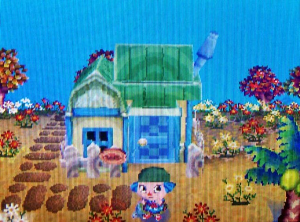 Goldie's house by the beach