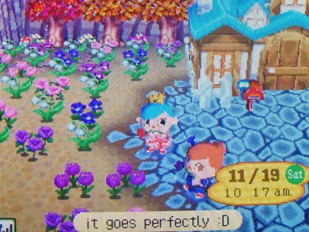 Rain's gift of pastel flowers