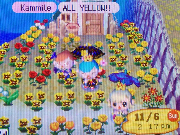 Puddles's yellow garden