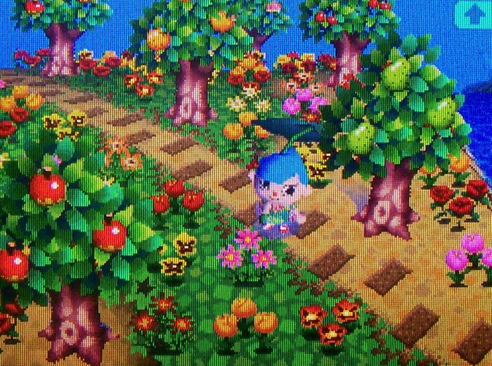 Would Like Opinions On My Paths Animal Crossing New Leaf Message