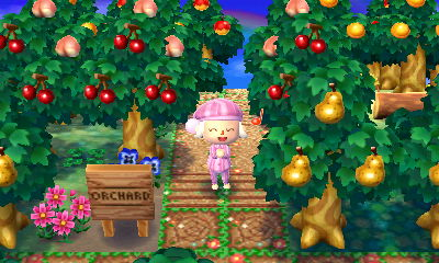 A Forest Life Amy S Animal Crossing Blog Page 5