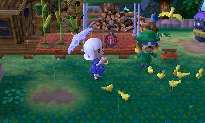 Harvey feeding birds in rain