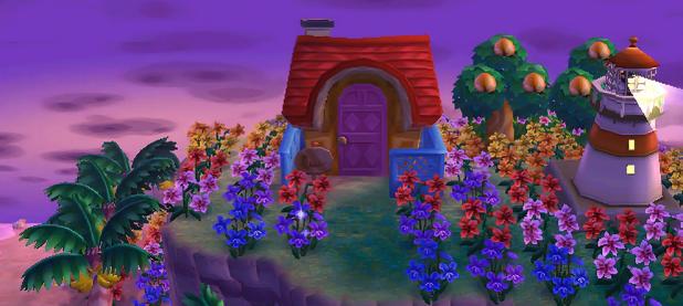 Bunnie's house
