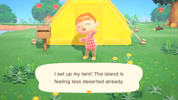 I set up my tent! The island is feeling less deserted already.