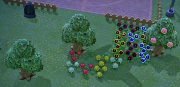 Cody's flower arranging